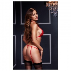 Set intimo sexy per donna - LACY BRA GARTER OPEN CROTCH PANTY 2P RED